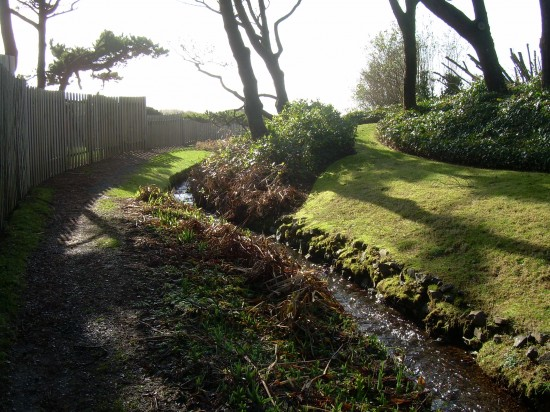 Manzanita-garden path to the beach